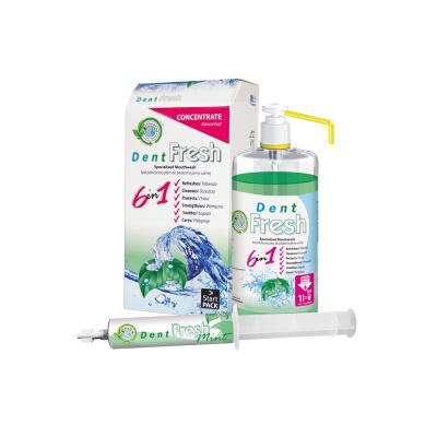Dent Fresh Starter Kit