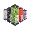 Riskontrol Art NV jednorazowe końcówki nadmuchawko-strzykawkę 250 szt. -kolor: fioletowy, smak: czarna porzeczka